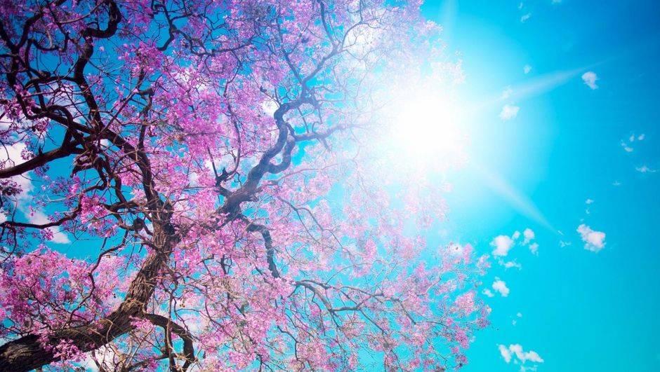 Hoşgeldin Bahar!